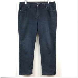 Style & Co. Petite 16 16P Cropped Jeans Straight